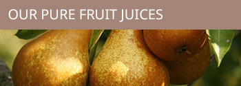 Our pure fruit Juices
